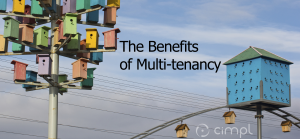 Benefits-of-a-multitenant-software